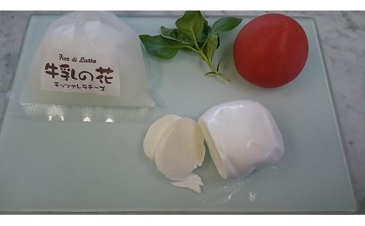 A-76 富士山・牛乳の花チーズセット(モッツァレラ)