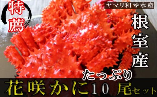 CD-34007 【北海道根室産】花咲ガニ450~550g前後×10尾