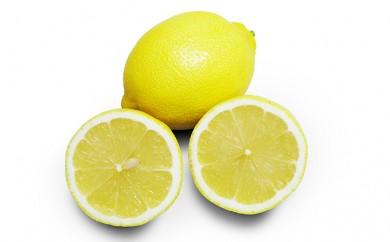 [№5991-0596]瀬戸内レモン 約5kg