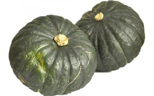 143 庄内砂丘のかぼちゃ(1箱5~7個入れ×2セット)