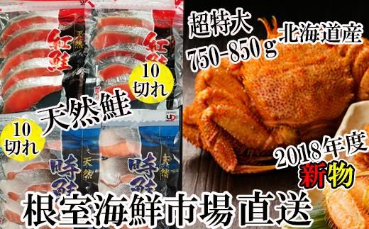 CC-42003 毛ガニ750~850g×1尾、紅鮭・時鮭各10切[419784]
