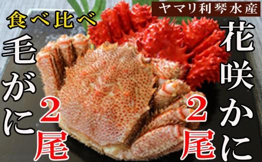 CD-34008 【北海道根室産】花咲ガニ600~750g前後×2尾・毛ガニ600~850g前後×2尾