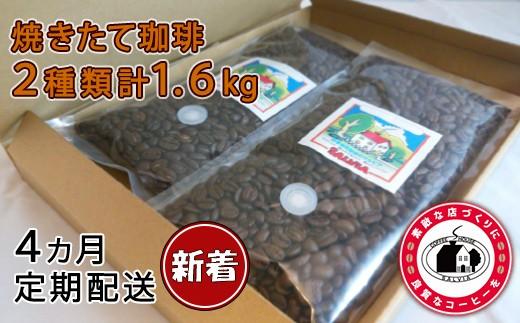 【C31】ハイグレード珈琲豆2種4回発送!計1.6㎏