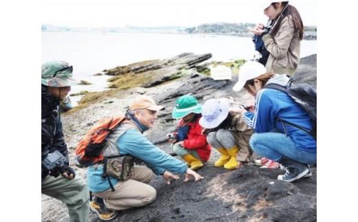 島の歴史や生物について詳しくレクチャー