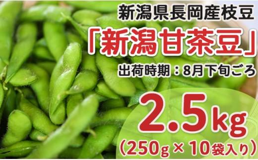 Z8-013新潟県長岡産枝豆2.5kg【新潟甘茶豆250g×10袋入り】