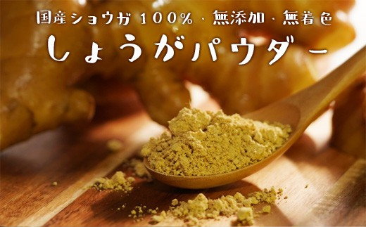 [№5725-0133]【無添加】農家が作る 生姜100%パウダー 25g×4袋