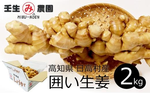 [№5725-0131]万能食材!こだわりの低農薬「囲い生姜」 2kg