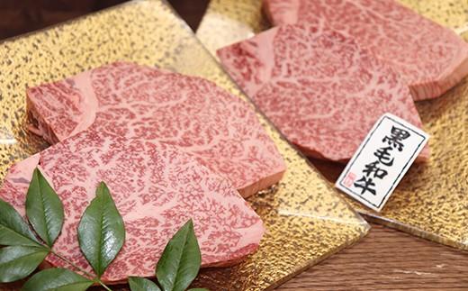 507 鹿児島県産黒毛和牛A-5特選ヒレステーキ4~5枚(約520g)