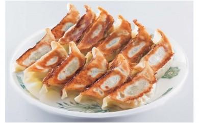 [№5856-1159]冷凍生餃子&若鶏唐揚げセット