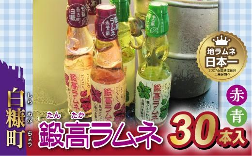 鍛高ラムネ(青・赤)【30本入り】