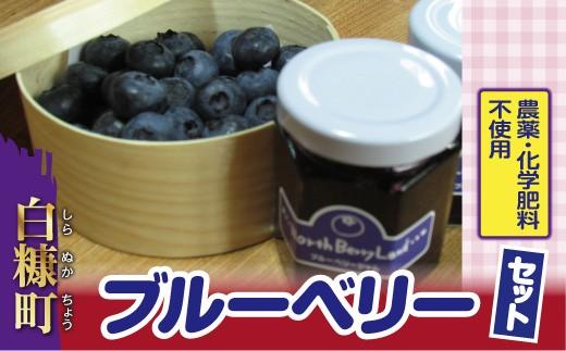 [№5723-0247]農薬・化学肥料不使用ブルーベリーセット
