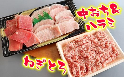 A)清幸丸水産 目鉢まぐろの盛り合わせ&ねぎとろセット