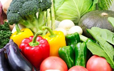 [№5525-0285]北海道伊達市産直・旬のおまかせ野菜詰合せ