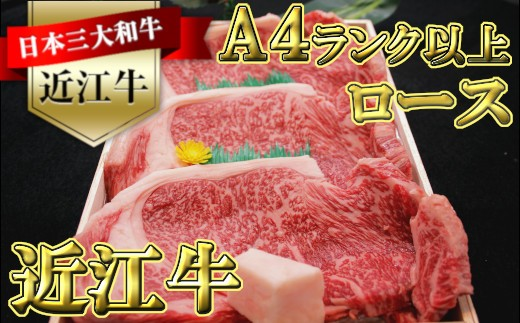近江牛サーロインステーキ 200gx3枚入【H013-C】