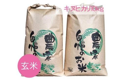 No.066 キヌヒカリ 玄米10kg[小林梨園]