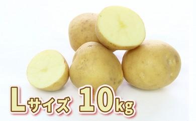 [№5724-0211]北海道壮瞥町産じゃがいも(とうや)Lサイズ10kg