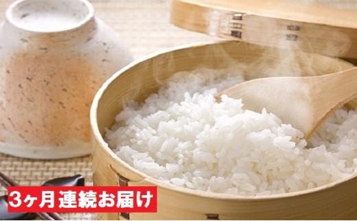 [№5720-0094]新潟県十日町産魚沼コシヒカリ 3kg×3ヶ月連続