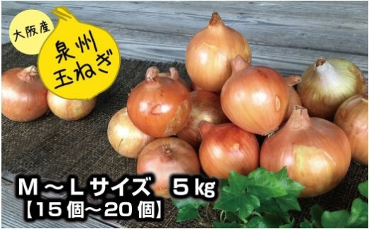 A-28.泉州玉ねぎ5kg 保存用ネット付