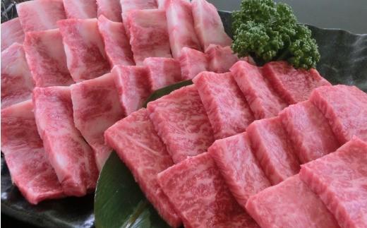 [A001-203011]阿蘇あか牛焼肉2種セット500g