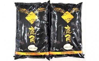 [№5764-0328]【30年産】 あきたこまち 精米 10kg(5kg×2袋)