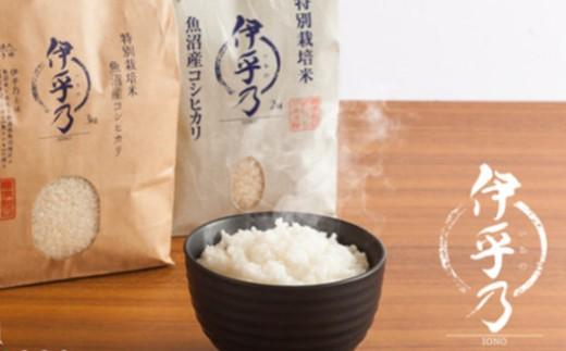 魚沼産コシヒカリ特別栽培米「伊乎乃」5㎏