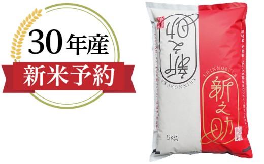 【H30年産】新潟県長岡産「新之助」5kg