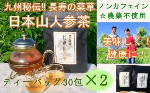 [№5656-0421]★希少★日本山人参茶30包入り×2袋
