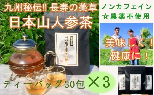 [№5656-0420]★希少★日本山人参茶30包入り×3袋