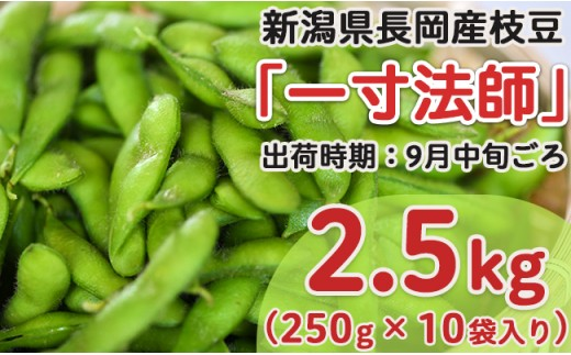 Z8-015新潟県長岡産枝豆2.5kg【一寸法師250g×10袋入り】