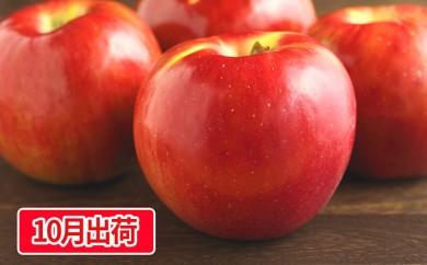 [№5823-0435]大江の恵み 紅玉約10kg家庭用 大江町産