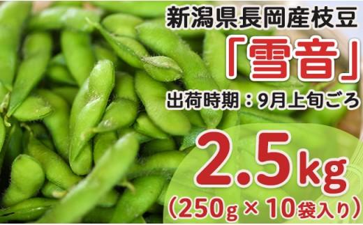 Z8-014新潟県長岡産枝豆2.5kg【雪音250g×10袋入り】