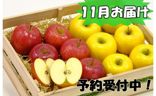 【280-11】 イーハトーヴ訳アリりんご5kgセット 《11月発送 予約受付》