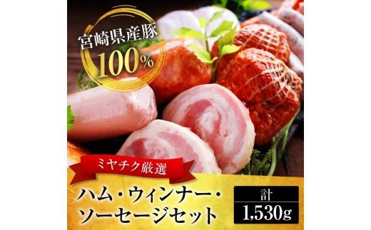 A263 厳選!!たっぷり贅沢ファミリーセット(宮崎県産豚100%使用)