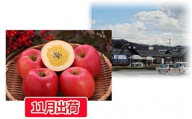 [№5823-0431]大江町産 高徳りんご約2kg
