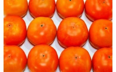和歌山県産 富有柿 約7.5kg 30~40玉