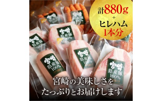 A264 特選!!笑顔をお届け!!ハム満喫セット(宮崎県産豚100%使用)