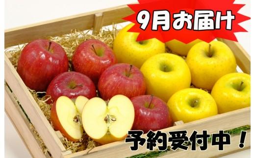 【280】 イーハトーヴ訳アリりんご5kgセット 《9月発送 予約受付》