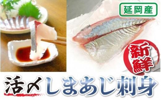 A3 高級鮮魚!延岡産活〆シマアジのお刺身