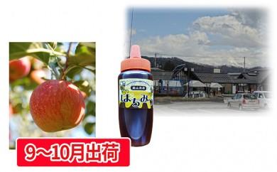 [№5823-0428]大江町産 千秋りんご約3kg はちみつ300g