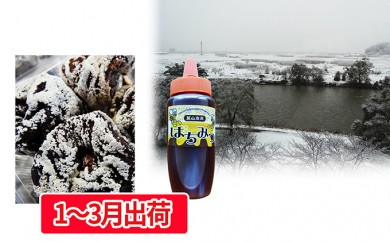 [№5823-0425]山形県産干し柿30ヶ ハチミツ300g