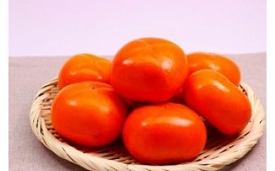 和歌山県産 刀根柿 約7.5kg 30~40玉