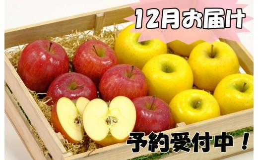 【280-12】 イーハトーヴ訳アリりんご5kgセット 《12月発送 予約受付》