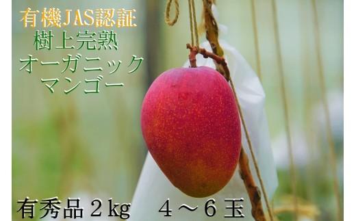 有機JAS認証 オーガニックマンゴー樹上完熟2kg(有秀品)4~6玉