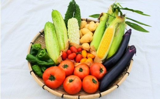 [F050-205002]大自然の新鮮旬の野菜(5種~8種)セット【道の駅あそ望の郷くぎの】