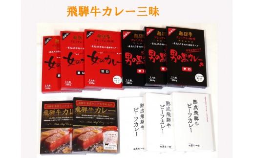 飛騨牛カレー三昧セット 4種類11食セット[D0033]