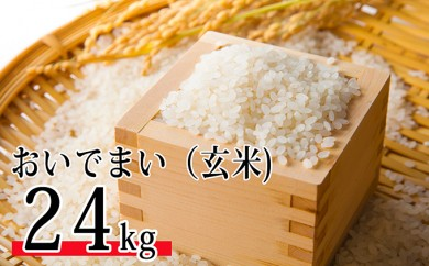 [№4631-1447]SWANの特選米 おいでまい(玄米24kg)【平成30年度新米】