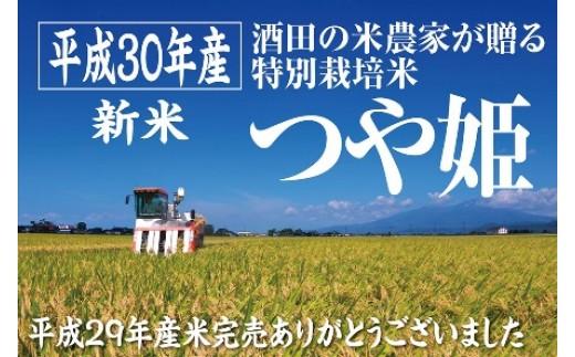 NB430 平成30年産「酒田の米農家から直送!」つや姫11kg SI