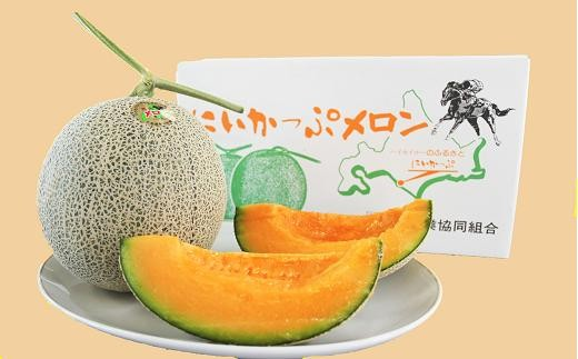 45  【北海道新冠産】にいかっぷメロン 2玉  9,000円(数量限定50セット)