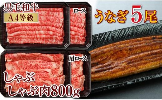 【I43005】うなぎ5尾&黒毛和牛ロースしゃぶしゃぶ800g