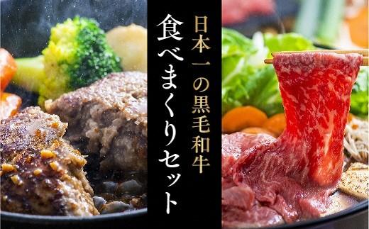 E-54  豊後牛ハンバーグ(9個)&頂おまかせすきやき肉(500g)贅沢セット